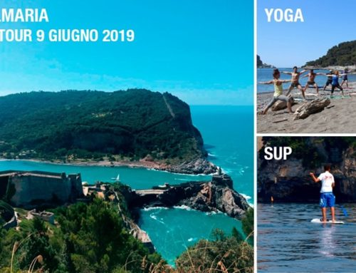 Palmaria Sup Yoga Tour